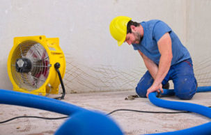 Mold Remediation In Five Steps