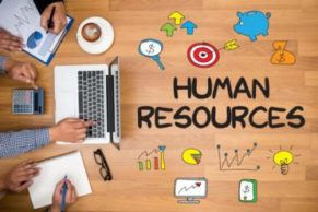 5 Steps To Choose The Best HRMS Software!!!