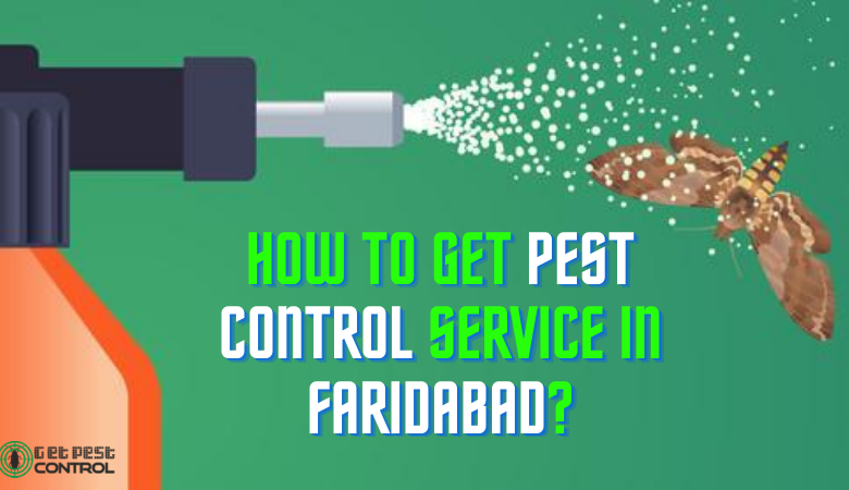 How to Get Pest Control Service in Faridabad?